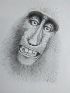 Smile Though Your Heart is Braking - graphite on Canson drawing paper - 30 x 42cm